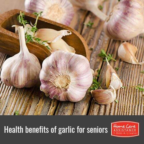 Reasons to Add Garlic to a Jefferson Co, CO Senior's Diet
