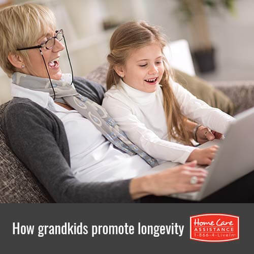 How Grandkids Promote Senior Longevity in Jefferson Co, CO