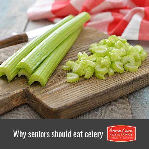 Why Seniors Should Eat More Celery in Jefferson Co, CO