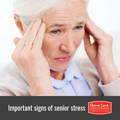 4 Signs of Senior Stress in Jefferson Co, CO