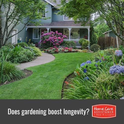Can Gardening Boost Longevity for Jefferson Co, CO Seniors?