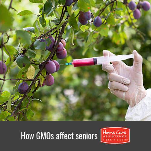How GMOs Affect Elderly Health in Jefferson Co, CO